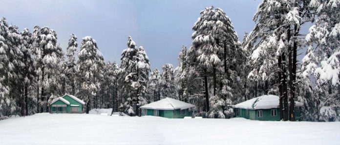 Patnitop | Perfect Winter Destination For Tourists